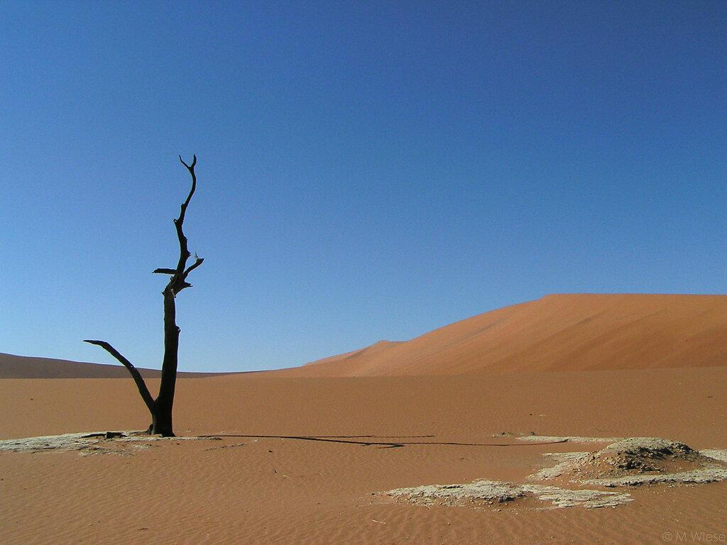 051211-marc-wiese-namibia-0534-2005-Namibia.jpg