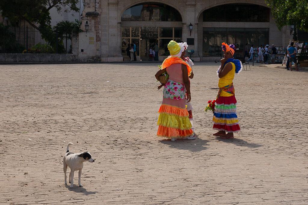 121103-marc-wiese-DSC2303-2012-Cuba.jpg