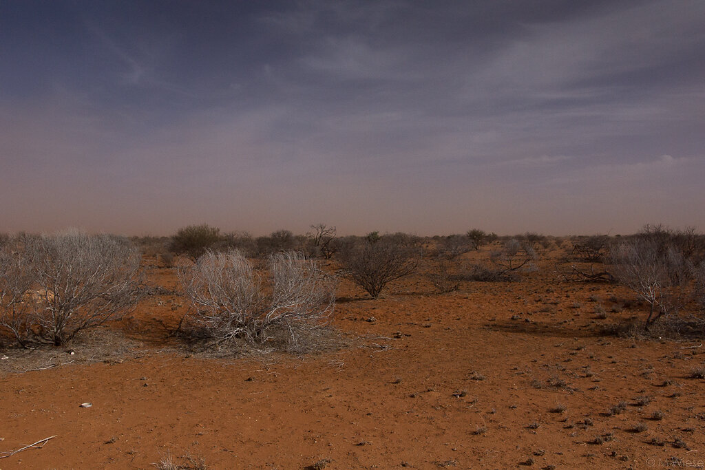 141112-marc-wiese-DSC3989-2014-Australien-Urlaub.jpg